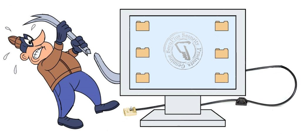 Anti-theft computer