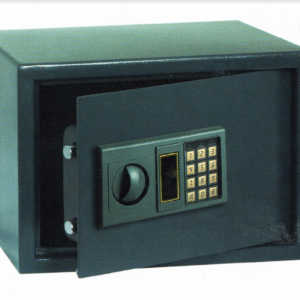 Document Safe (Small)